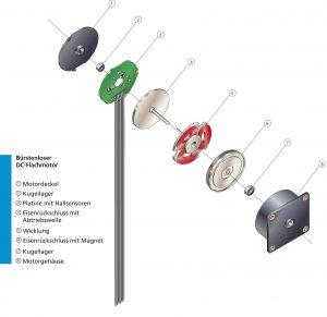 Der Aufbau der bürstenlosen Gleichstrommotoren im Detail Bild: Faulhaber