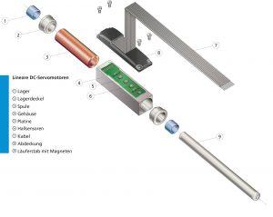 Prinzipielle Aufbau der linearen DC-Servomotoren. Bild: Faulhaber