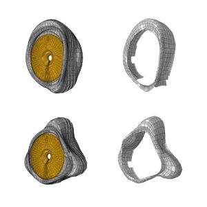 Simulation und Messergebnisse eines Reifens. Bild: Continental AG